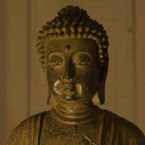 Factsheet: Buddhism